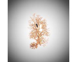 ALBERO (ramas) ( Domus  - 03901 )