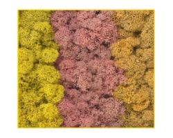 Muschio colore autunnale assortiti 50 g. ( Er Decor - ER.1012 )