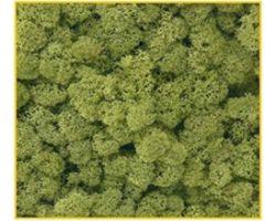 Muschio verde chiaro 50 g. ( Er Decor - ER.1013 )