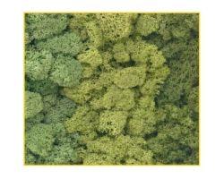 Muschio verde assortiti 125 g. ( Er Decor - ER.1021 )