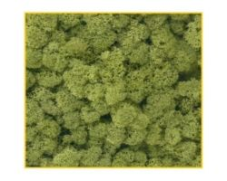 Muschio verde chiaro 125 g. ( Er Decor - ER.1023 )